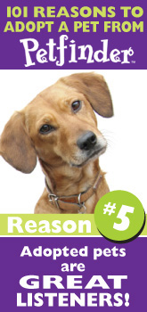 Petfinder: 101 Reasons to Adopt ... pets are great listeners