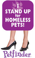 I Stand Up for Homeless Pets