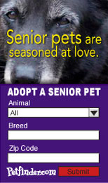 Petfinder pet search