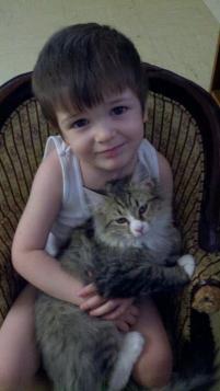 Photo of Simon, a cat