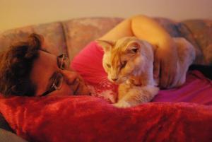 Photo of Azlan, a cat