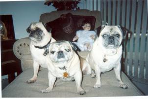Photo of Bob and Princess, a dog