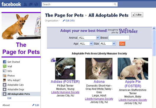 page for pet adoption