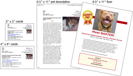 Print Adoption Materials Petfinder Members Share pets offline Pet Flyers