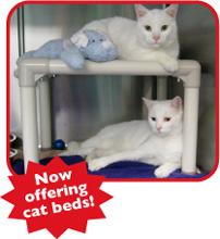 Kuranda Dog and Cat Beds