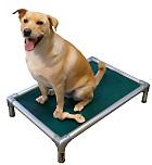 forest at eu buy from pvc dogbeds frame kuranda birch beds sheet dog hundenbetten bed walnut hondenbedden
