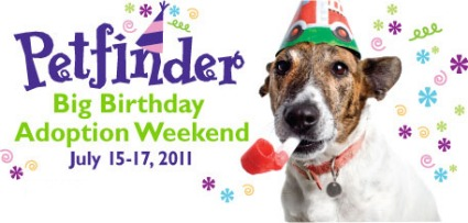 Petfinder Birthday Event