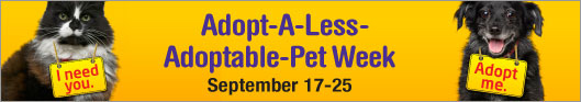 Adopt a Less-Adoptable-Pet Week