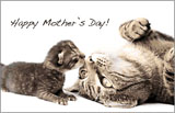 Mother's Day Ecard - I'm Glad we are Family
