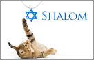 Passover Ecards