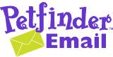 Petfinder Email