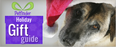 Petfinder Holiday Gift Guide