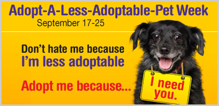 adopt-a-less-adoptable pet logo
