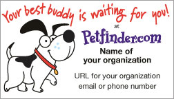 Print Adoption Materials Petfinder Members Share pets offline