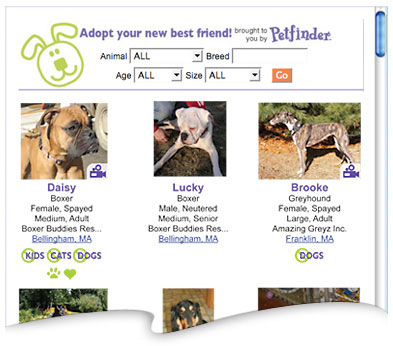 Petfinder Customized Pet List Preview