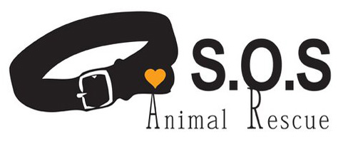 Save Our Seniors Animal Rescue