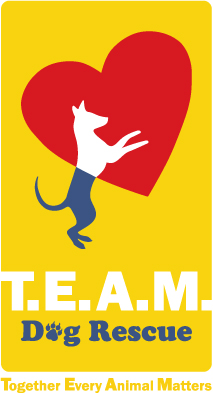 TEAM Dog Rescue