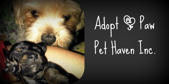 Adopt a Paw Pet Haven Inc.