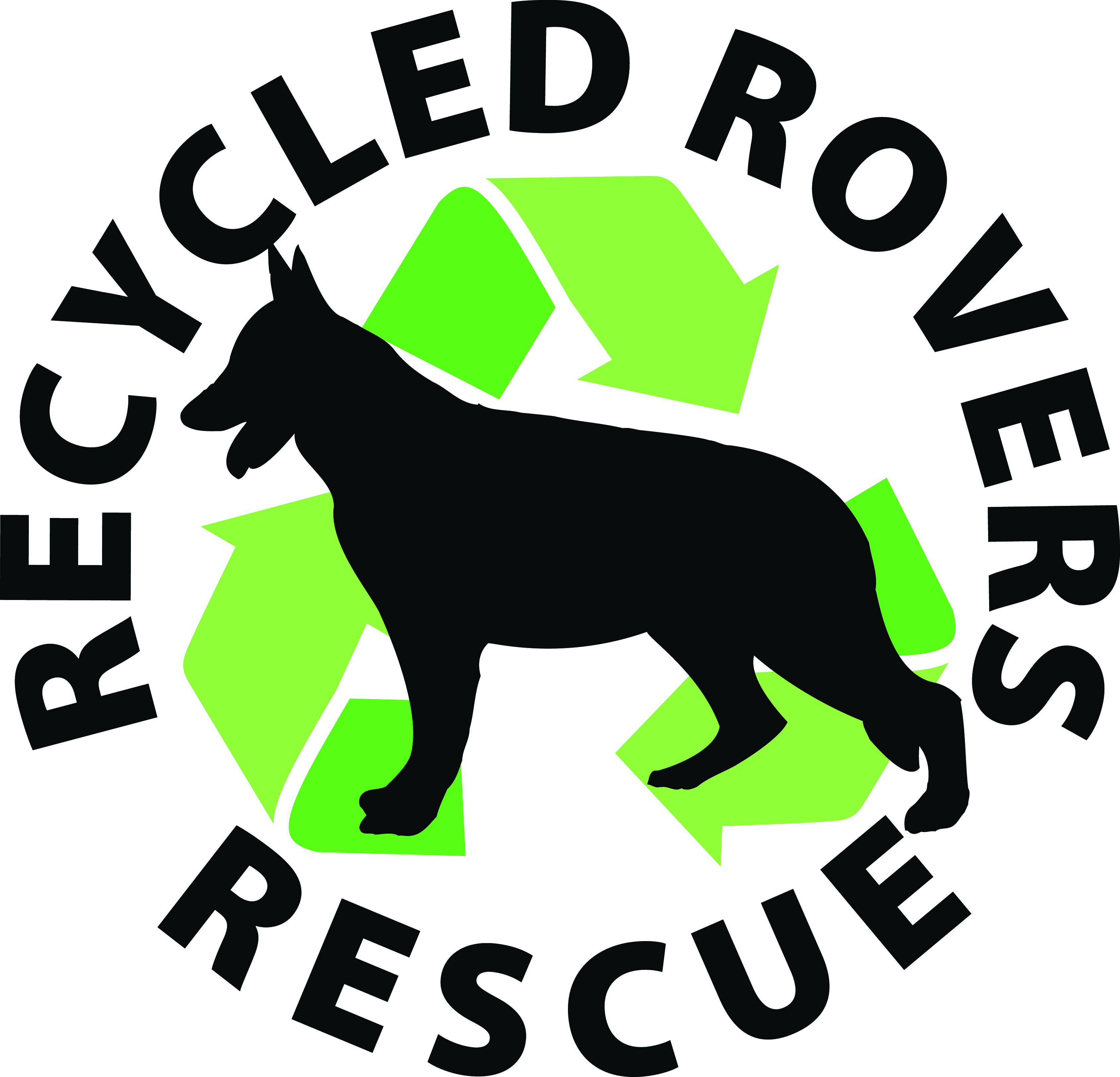 Recycled Rovers Rescue at Southwest Pet Hospital