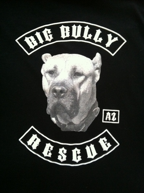 Big Bully Rescue