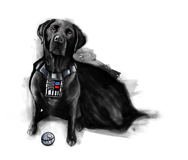 The Bark Side Rescue