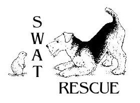 Airedale Terrier Rescue (Southwest US)