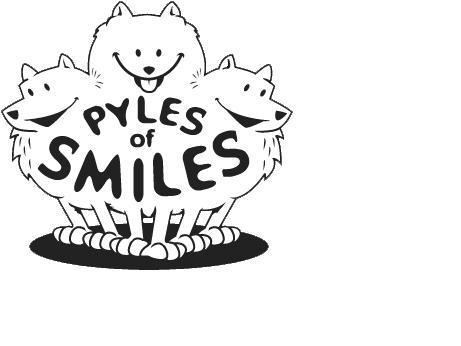Pyles of Smiles, Inc.
