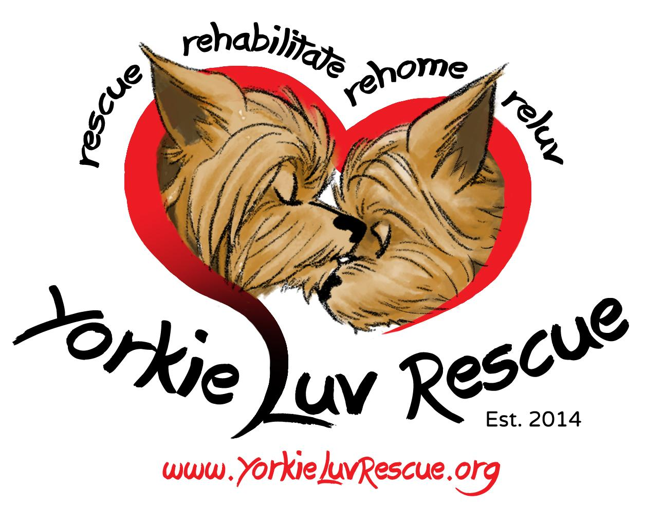 Yorkie Luv Rescue