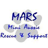 Mini Aussie Rescue & Support (MARS)