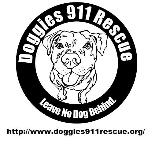 Doggies 911 Rescue