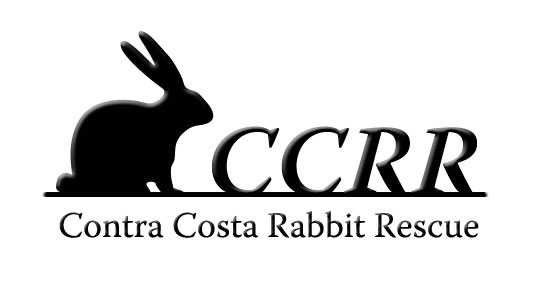 Contra Costa Rabbit Rescue