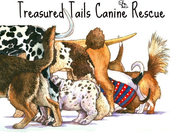 Treasured Tails Canine Rescue