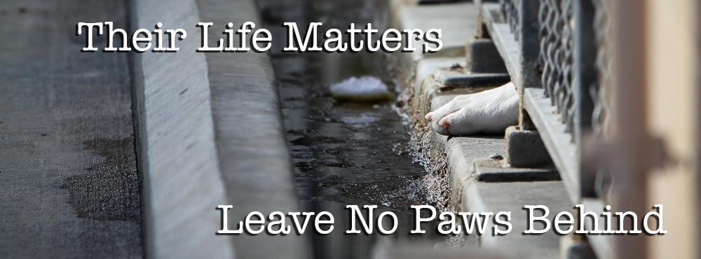 Leave No Paws Behind, Inc
