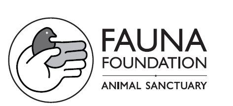 The Fauna Foundation