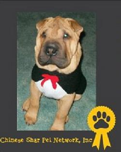 Chinese Shar Pei Network, Inc.