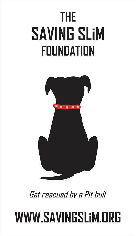 Saving Slim Foundation