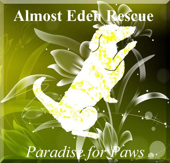 Almost Eden Rescue