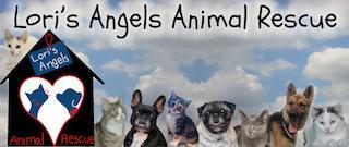 Lori's Angels Animal Rescue