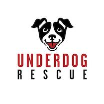 Underdog Foster Network