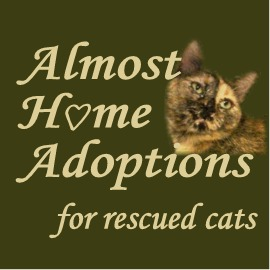 Almost Home Adoptions for rescued cats