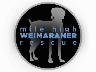 Mile High Weimaraner Rescue