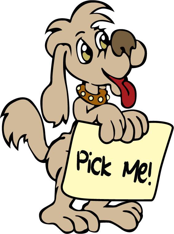 Pick Me! Pet Rescue
