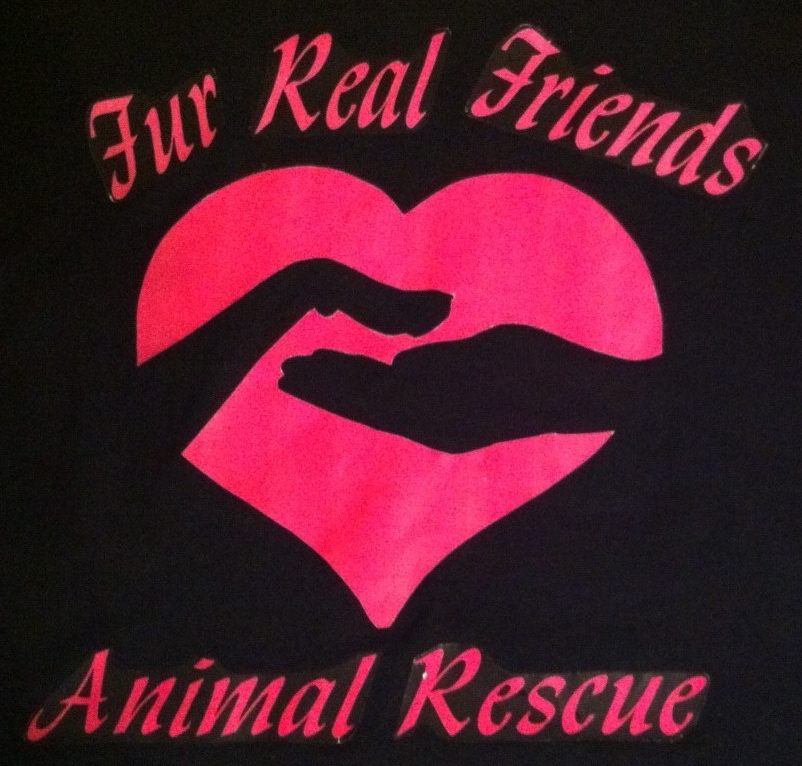 Fur Real Friends Animal Rescue