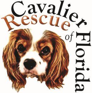 Cavalier Rescue of Florida, Inc.