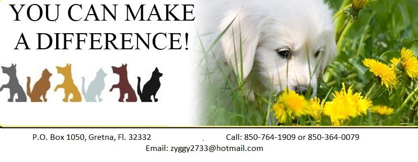 YouCanMakeADifference, Inc.