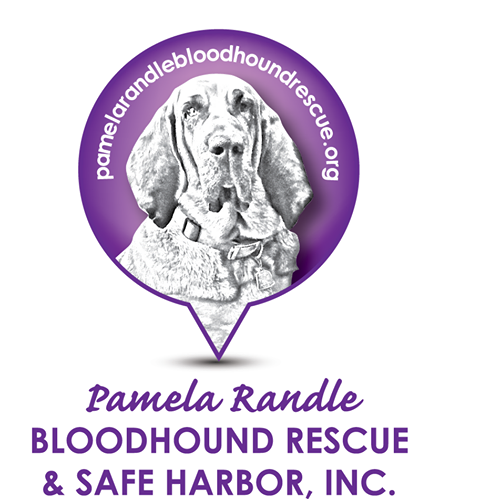 Pamela Randle Bloodhound Rescue and Safe Harbor
