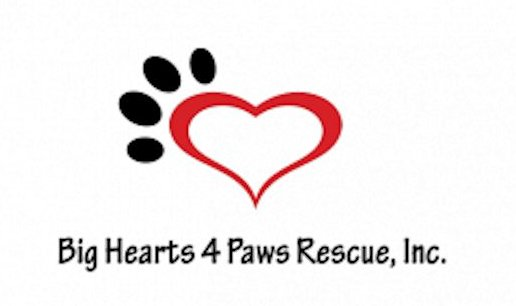 Big Hearts 4 Paws Rescue