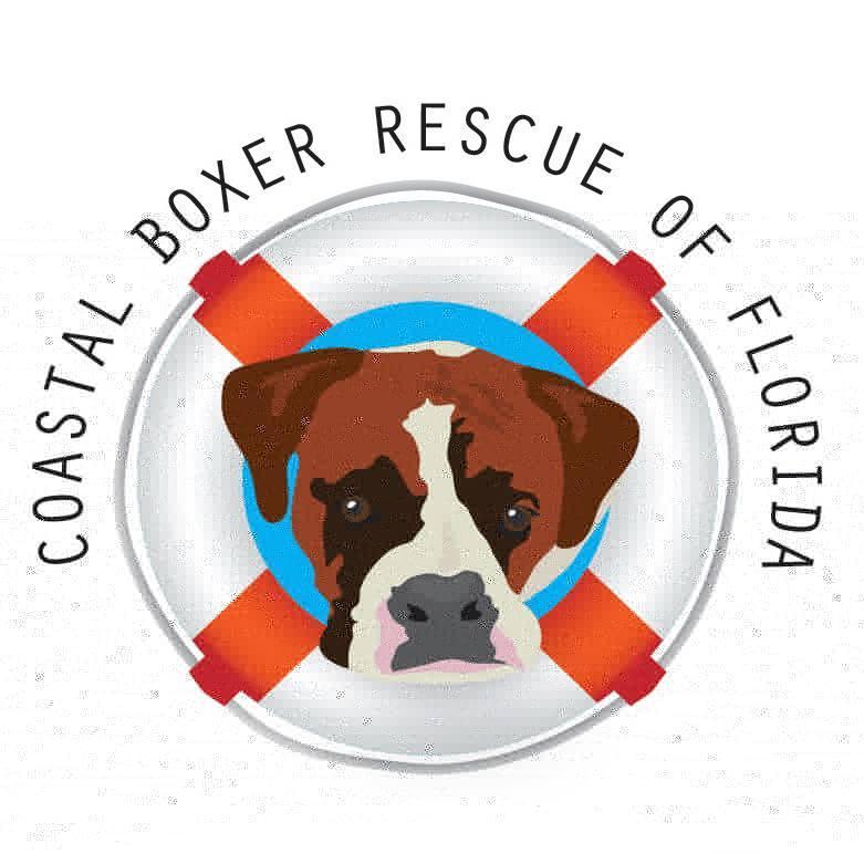 Coastal Boxer Rescue