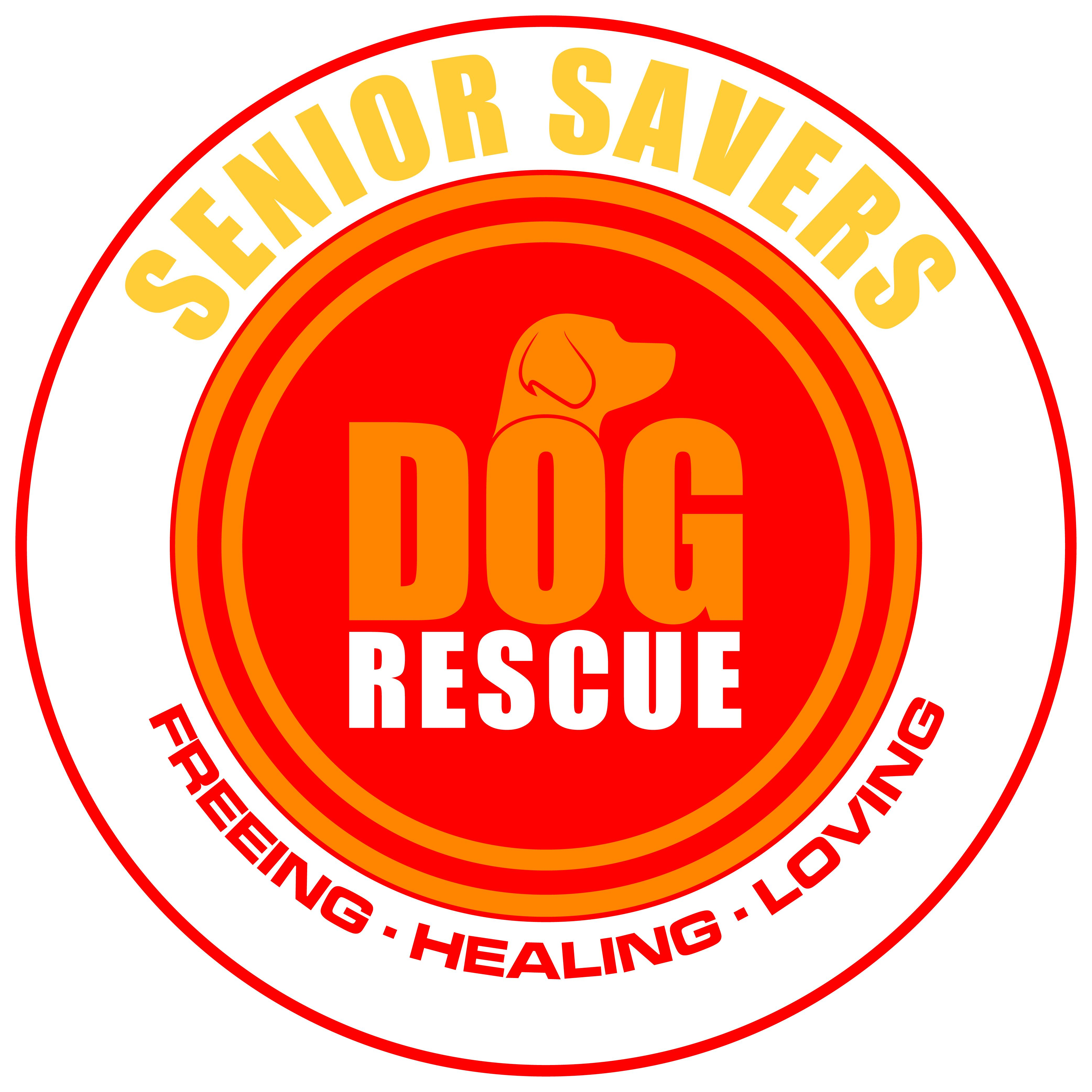 Senior Savers Dog Rescue