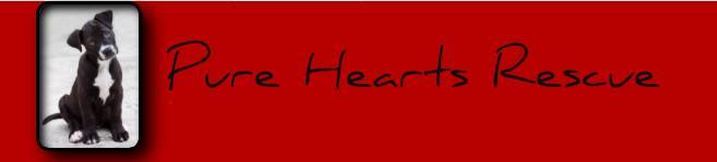 Pure Hearts Rescue